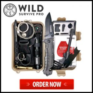 WildSurvival